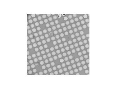 CryoMatrix-Carbon film
